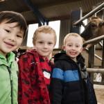 Adventure Farm School Visit high res (17)