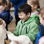 Adventure Farm School Visit high res (18)
