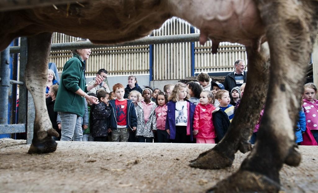 Adventure Farm School Visit high res (5)