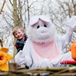 Barney & bunny 2