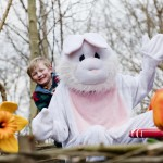 Barney & bunny 2 HIGH RES- LANDSCAPE-min